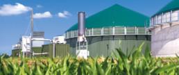 Biogas -Erneuerbare Energien